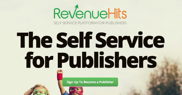 Revenue Hits Website