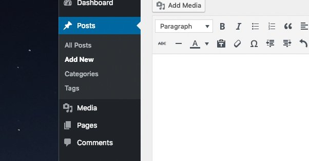 Add a New WordPress Post